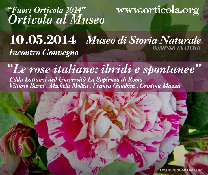 Rose italiane: ibridi e spontanee