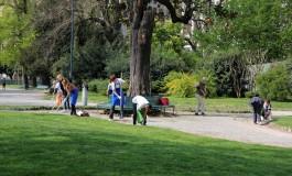 Volontario giardiniere