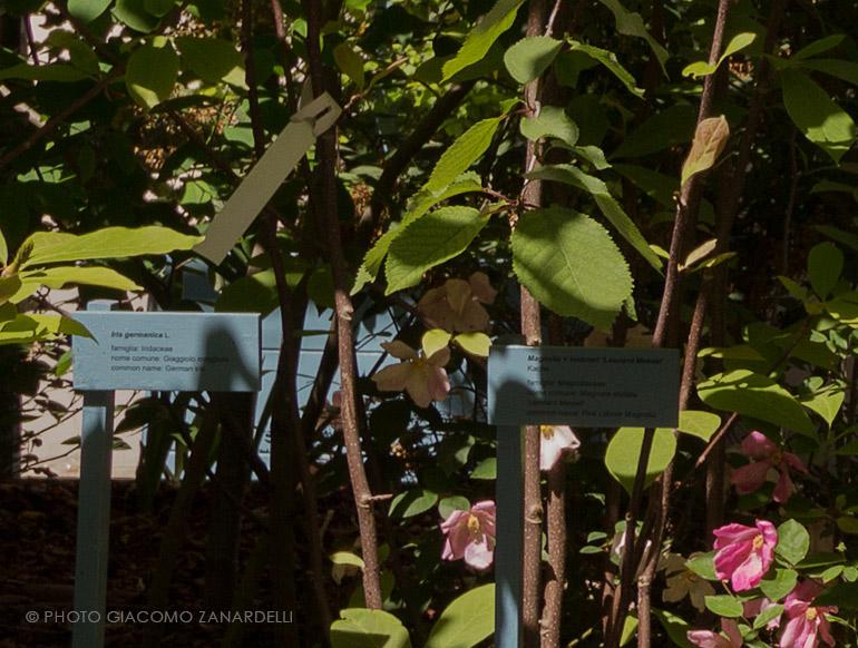 Il giardino futurista didattico