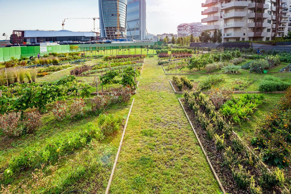 orti-fioriti-citylife-panoramica