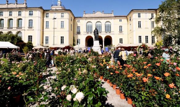 Orticola Flower Show