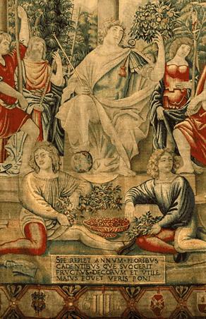 Convenzioni Musei